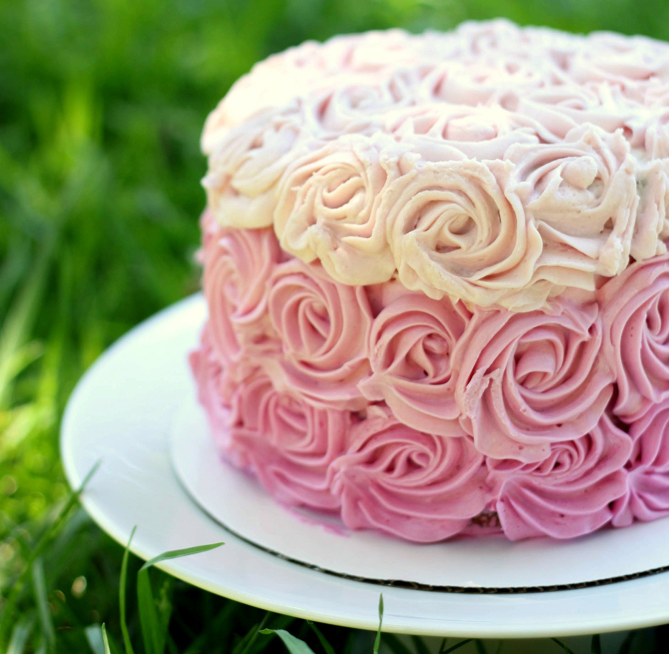 Ombre Rose Cake 52 Kitchen Adventures